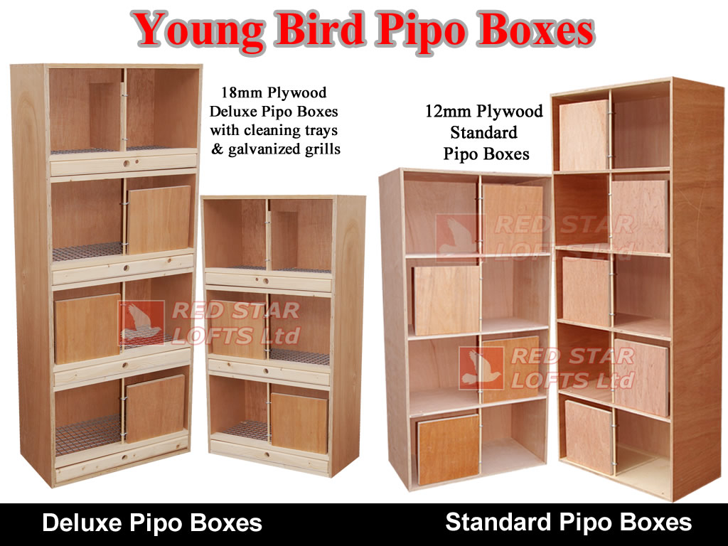 Pipo Boxes